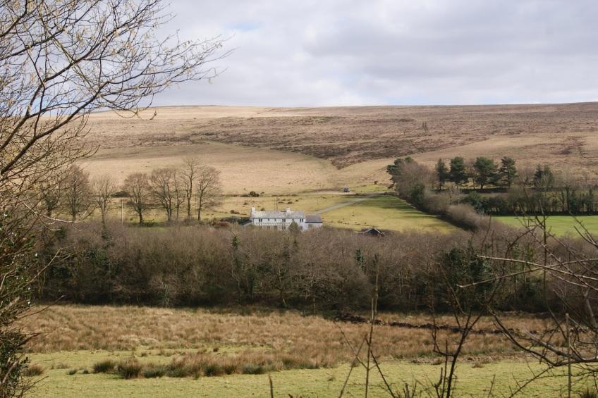 Dartmoor bed and breakfast